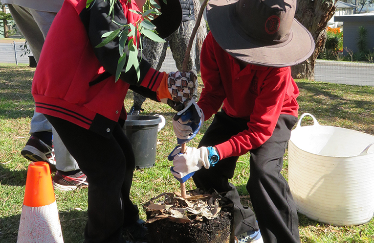 Two students at Soldiers Point Public School getting their tree into the ground.