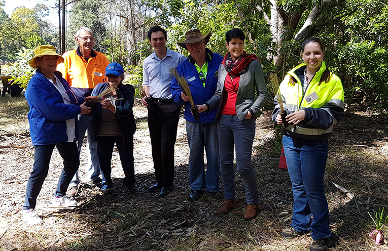 Creating critical habitat for native fauna in Boomerang Park.