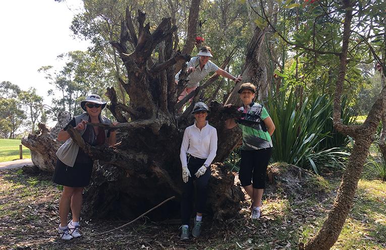 Julie Newsham (Nelson Bay), Helena Miksevicius (Everglades), Catharine Pyke (Wagga), Janelle Tolhurst (Nelson Bay).