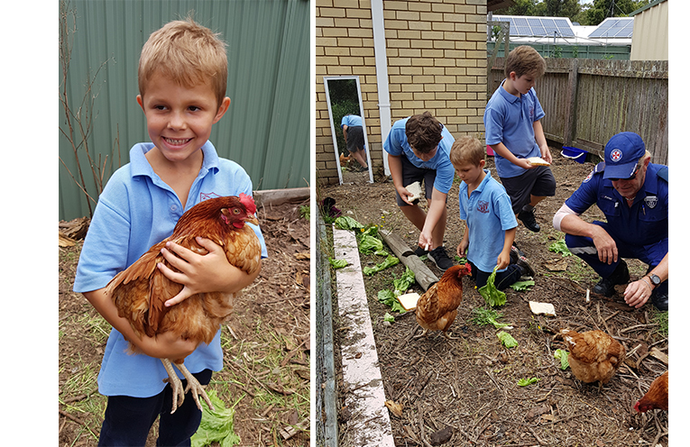AMBULANCE STATION VISIT: Aaron Oltersdorf. (left) AMBULANCE STATION VISIT: Tea Gardens Primary School Students make friends with the chooks. (right)