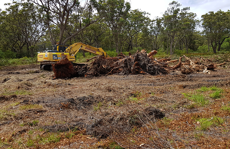 SPINIFEX AVE, TEA GARDENS: Earthmovers clear bushland for Asset Protection Zone.