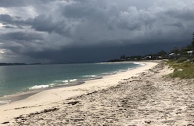 WILD WEDNESDAY: Jimmy's Beach, Hawks Nest.