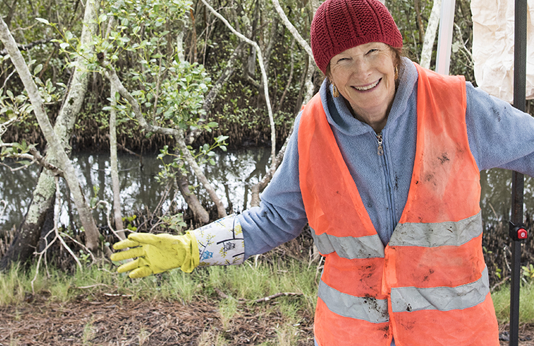 Sea Shelter Volunteer Louise Smith is a Bob's Farm resident and OCCI Member. Just one of the volunteers who got stuck into cleaning up the Mangroves.