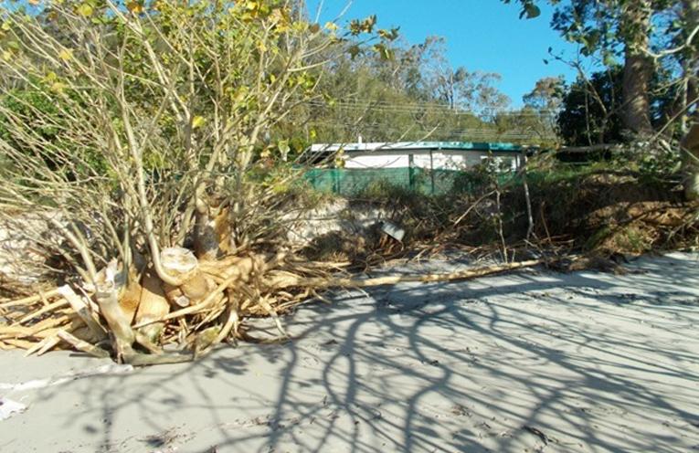 Conroy Park Erosion.