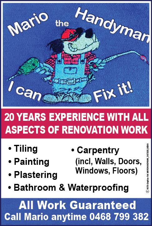 Mario Handyman  I Can Fix it